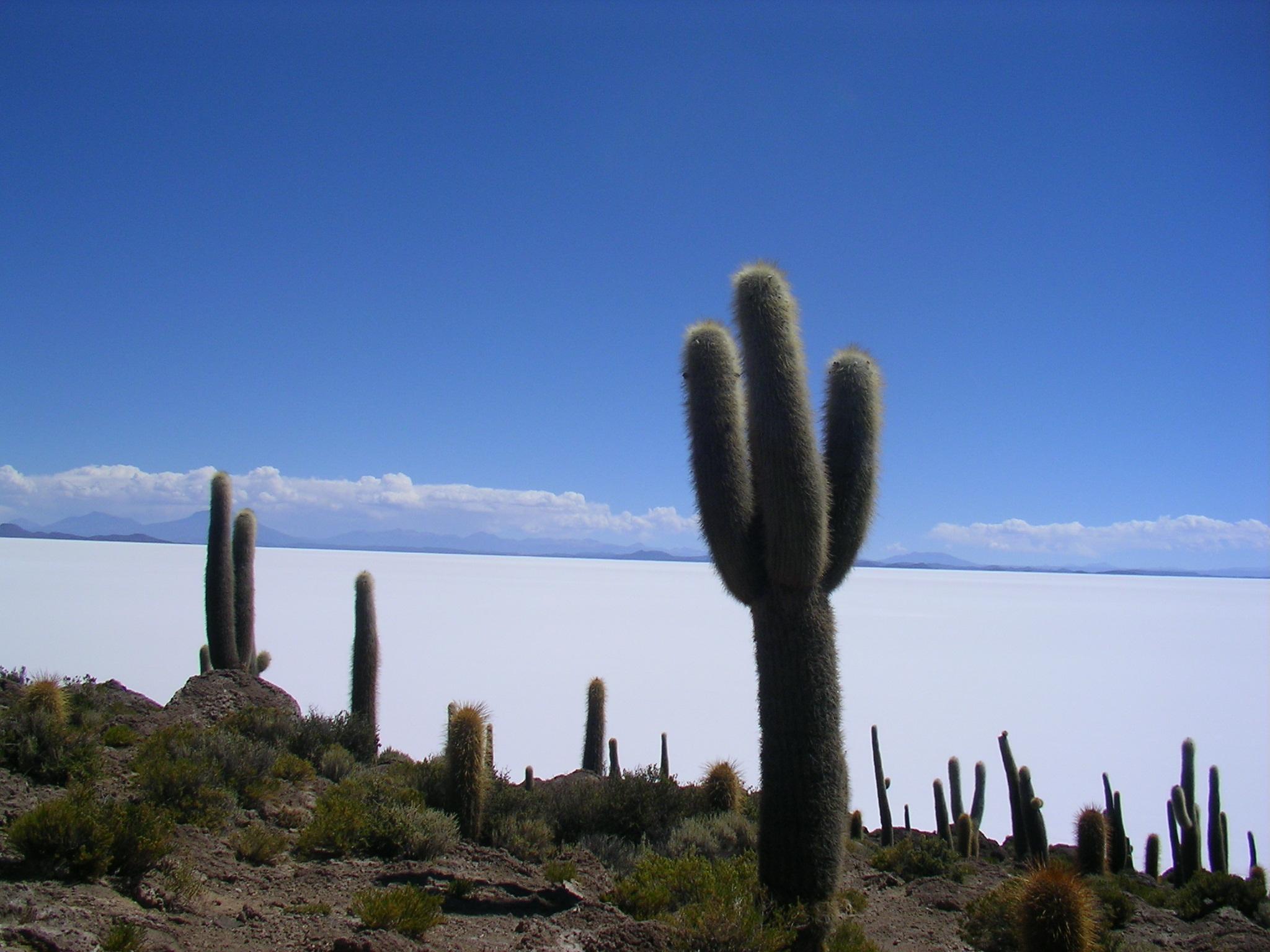 Bolivia2008_178