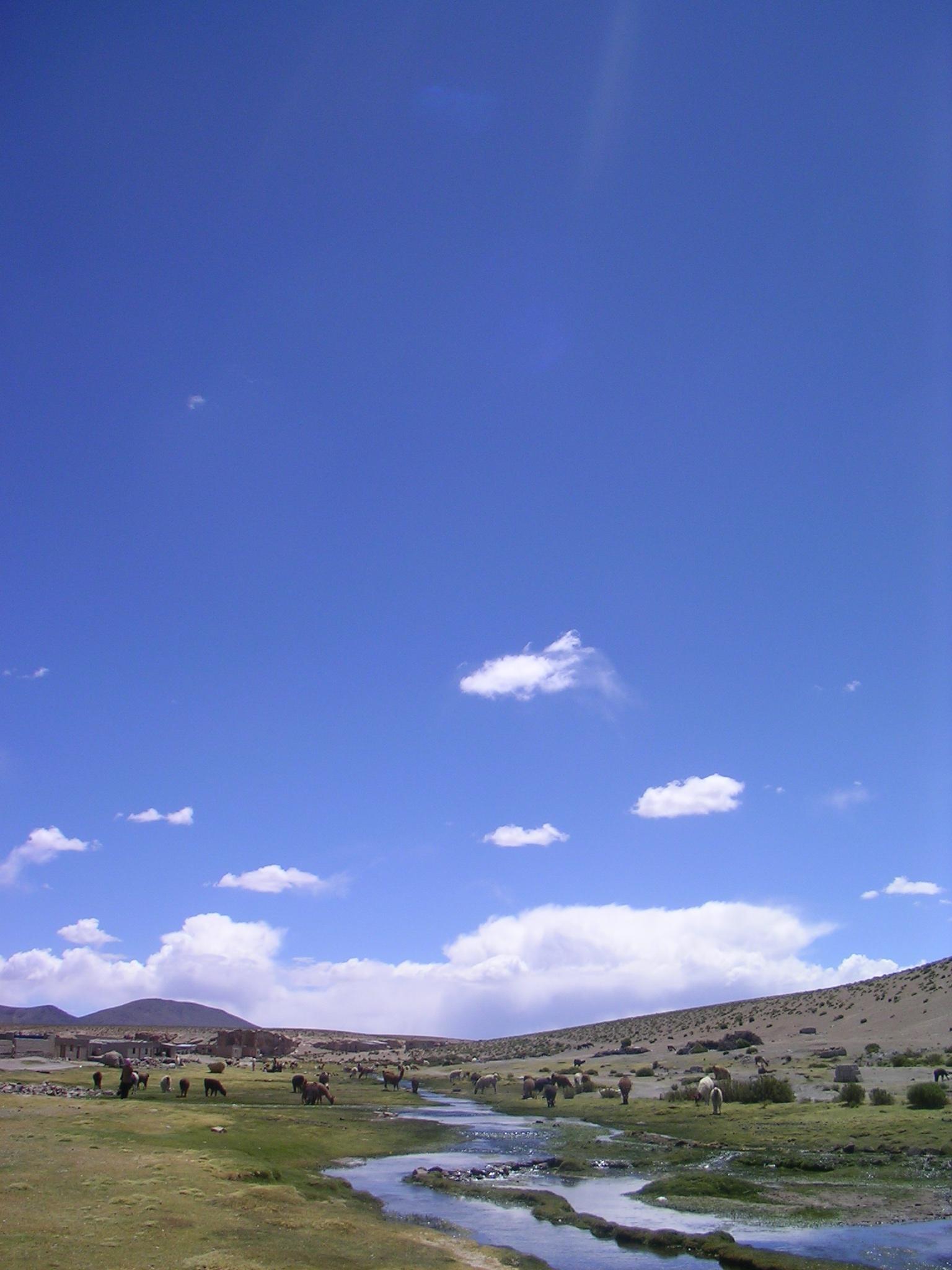 Bolivia2008_333